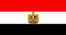 EGYPT - HAND WAVING FLAG (MEDIUM)